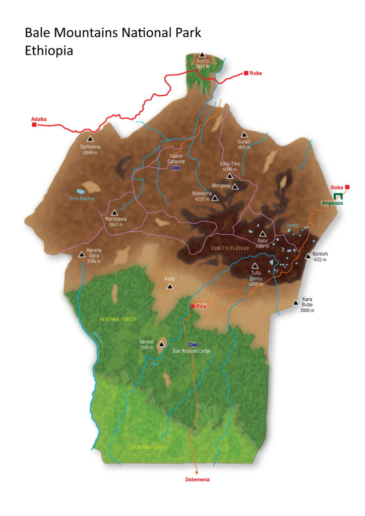 Bale Mountains National Park Kaart